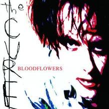 BLOODFLOWERS, CD