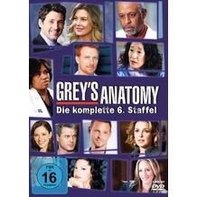 Buena Vista Greys Anatomy - Die jungen Ärzte (Season 6) DVD
