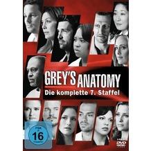 Buena Vista Greys Anatomy - Die jungen Ärzte (Season 7) DVD