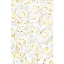 Duni Mitteldecken aus Dunicel 84 x 84 cm Motiv 1 Stück White Dreams