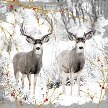 Duni Servietten, Tissue 3lagig, Motive, 20er 33 x 33 cm Reindeers & Berries