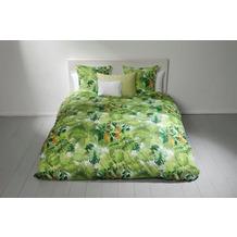 Fischbacher Bettbezug 776 Papagallo grün 44 bedruckt Decken 135 x 200 cm