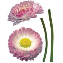 Komar Decosticker Daisy 50 x 70 cm
