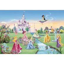 Komar Fototapete Disney Princess Castle 368 x 254 cm