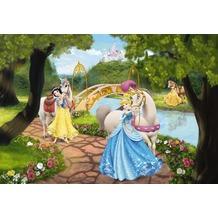 Komar Fototapete Disney Royal Gala 184 x 127 cm