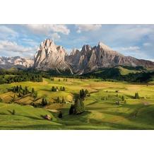 Komar Fototapete Alpen 254 x 368 cm