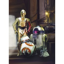 Komar Fototapete STAR WARS Three Droids,