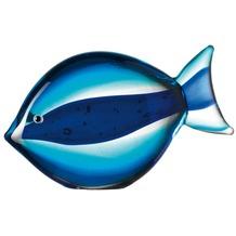 Leonardo Fisch Oceano hellblau