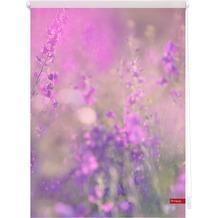 Lichtblick Rollo Klemmfix, ohne Bohren, blickdicht, Blumenwiese - Fuchsia Violett Breite: 100 cm