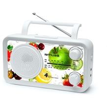 muse M-05VF Kofferradio U-M-L-K