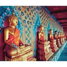 P+S Bangkok, Sepia, Citylove 60057-10