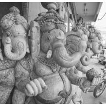 P+S Delhi, Schwarz/Weiß, Citylove 60075-20