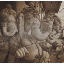 P+S Delhi, Vintage Brown, Citylove 60075-30