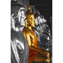 "papermoon XXL Poster / Fototapete ""mini"",  1 Teil, Blue back, The golden Buddha 115 x 160 cm"