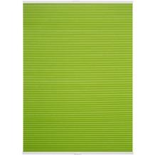 Lichtblick Plissee Klemmfix TOP, Thermo, ohne Bohren, verspannt  Grün Breite: 100 cm, Länge: 130 cm