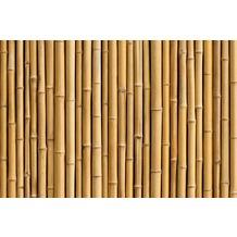 XXLwallpaper Fototapete Bambus SK-Folie 2,00 m x 1,33 m