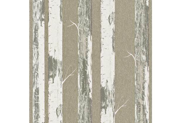 rasch vliestapete birke stamm 574500. Black Bedroom Furniture Sets. Home Design Ideas