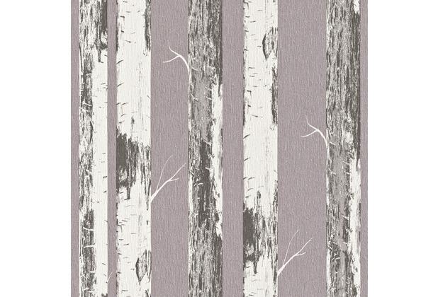 Rasch vliestapete birke stamm 574562 for Birke tapete