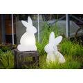 8 Seasons Shining Rabbit 70 cm (LED)