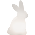 8 Seasons Shining Rabbit solar