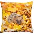 APELT Herbstzeit Kissen maisgelb 45x45, Igel