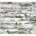 AS Création Papiertapete Il Decoro Tapete in Naturstein Optik grau 364922 10,05 m x 0,53 m