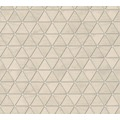 AS Création Vliestapete Authentic Walls 2 Tapete geometrisch grafisch grau braun 366223 10,05 m x 0,53 m