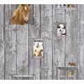 AS Création Vliestapete Little Stars Ökotapete PVC-frei bunt grau 358421 10,05 m x 0,53 m