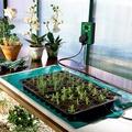 Bio Green Wärmematten für Gewächshaus