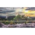 Bönninghoff Dekorative dreigeteilte Wandgarderobe mit drei Doppelhaken, Kieferbaum