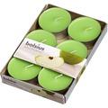 Bolsius Duft Maxilichte 8 Stunden 6er Pack grüner Apfel
