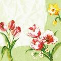 Duni Dunisoft-Servietten Red Tulip 40 x 40 cm 60 Stück
