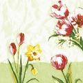 Duni Klassikservietten Red Tulip 40 x 40 cm 50 Stück