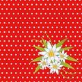 Duni Servietten 3-lagig Motiv Edelweiss Red 33 x 33 cm 20 Stück