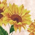 Duni Servietten Tissue Sunflower Poem 24 x 24 cm 20 St.