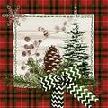 Duni Zelltuch-Servietten Naturally Christmas 33x33 cm 3lagig, 1/4 Falz 50 Stück