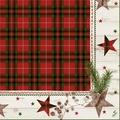 Duni Zelltuch-Servietten Naturally Christmas 40x40 cm 3lagig, 1/4 Falz 250 Stück