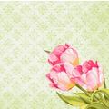 Duni Dunisoft-Servietten Love Tulips 40 x 40 cm 60 Stück