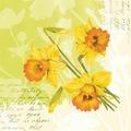 Duni Dunisoft® Servietten Spring Flowers 40 x 40 cm 12 Stück