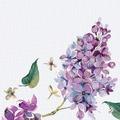Duni Dunisoft® Servietten Sweet Butterfly Lilac 40 x 40 cm 12 Stück