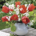 Duni Tissue Servietten Red Tulips 33 x 33 cm 20 Stück