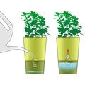 emsa FRESH HERBS Bewässerungsset 9-teilig