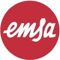 emsa CASA / CITY Ersatzvlies Geländertöpfe