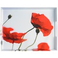 emsa Dekortablett CLASSIC Tablett, Corn poppies, 50 x 37 cm