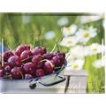 emsa Dekortablett CLASSIC Tablett, Cherries, 40 x 31 cm