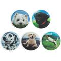 ergobag Accessoires Klettbilder-Set 5-tlg Kletties Hunde 011 hunde