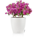 fleur ami Blumentopf Classico, 35/33 cm, weiß, innen