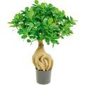 fleur ami FICUS PANDA BONSAI Kunstpflanze, 45 cm