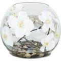 fleur ami NATURAL ILLUSION Glasvase, 30/30 cm, Orchidee weiß, Steine