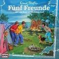 Fünf Freunde 113 und das Feuer auf der Felseninsel Hörspiel